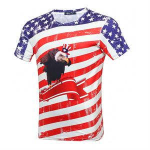T-shirt med USA flagga ochThe Bald Eagle